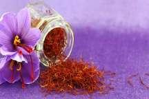 کاهش قیمت زعفران