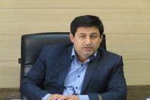 معاون شهرداری شیراز: با هیچ پیمانکاری تعارف نداریم
