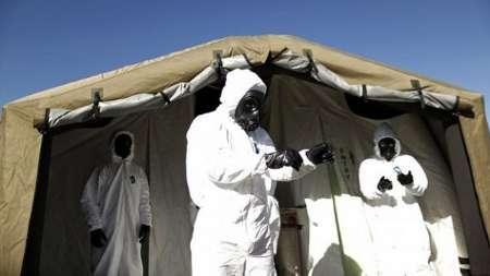 گسترش ویروس ها، شکل جدید تروریسم