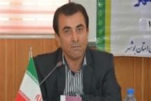 17هزار و 700 نوآموز در استان بوشهر زیرپوشش آموزش قرار دارند