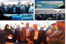 استاندار کرمان: سیاست دولت بر توسعه خود اشتغالی و کارآفرینی است