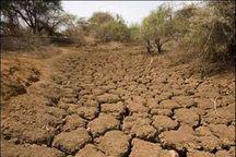 بارشهای اخیر نتوانسته مشکل خشکسالی در آذربایجان غربی را برطرف کند