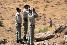 مناطق حفاظت شده گچساران کمبود محیط بان دارند