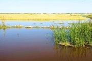 سیلاب 940 میلیارد ریال به تاسیسات کشاورزی همدان خسارت زد