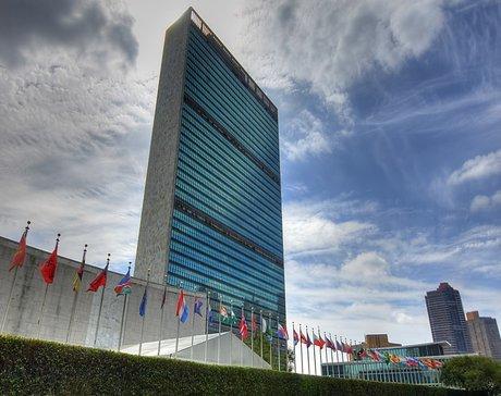 کلاهبرداری میلیاردی یکزن با عنوان نماینده سازمان ملل