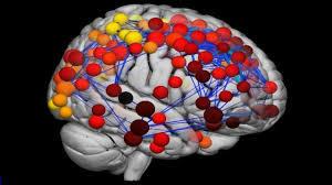 سرنخ بیماری های روانی در تغییرات مغزی دوران نوجوانی است