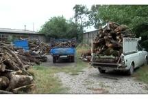 کشف بیش از ۱۰ تن هیزم و چوب جنگلی قاچاق در فارس