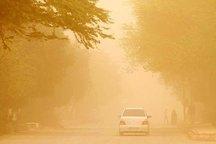 مهار یک میلیون هکتار اراضی خوزستان در برنامه بلندمدت مقابله با ریزگردها