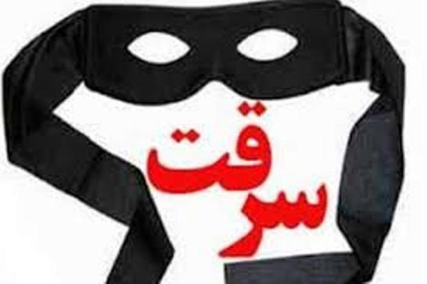 دو سارق با 10 فقره سرقت در لاهیجان دستگیر شدند