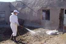 موردی از بیماری تب کریمه کنگو در کردستان مشاهده نشده است