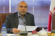 300هزار اصله نهال رایگان در استان قزوین توزیع می شود