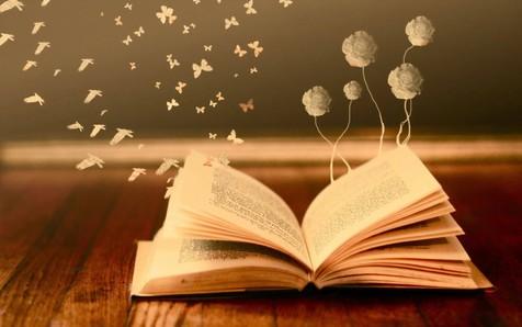 شهیدی که خاطراتش را به انگلیسی مینوشت 