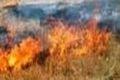 توضیحات یگان حفاظت منابع طبیعی قزوین در خصوص آتش سوزی مراتع طارم