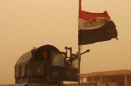 آزادی فلوجه آغاز پایان داعش است/ سر افعی قطع  شد+ تصاویر