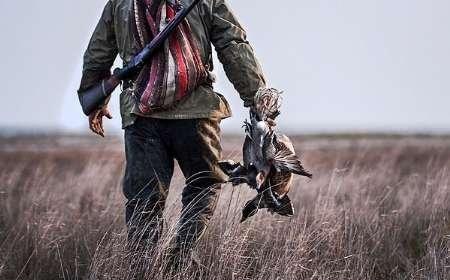 طرح ضربتی برخورد با خرید و فروش غیرمجاز پرندگان