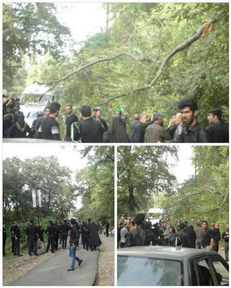یک کشته و 11 زخمی در اثر سقوط درخت بر روی عزاداران حسینی