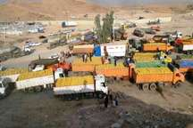 بیش از 795 هزار تن محصولات کشاورزی از مرزهای قصرشیرین به عراق صادر شد