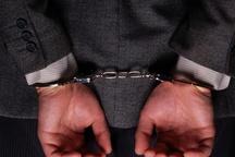 دستگیری سارق حرفه ای منزل در اندیمشک