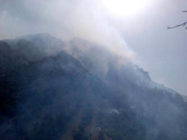 آتش در کوههای استان خوزستان و کهگیلویه و بویر احمد همچنان شعله ور است + عکس