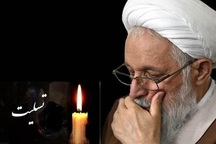 پیکر امام جمعه فقید شیراز چهارشنبه تشییع می شود