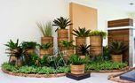 جی پلاس: تاثیر فوق العاده گیاهان در کاهش آلودگی هوای آپارتمان!