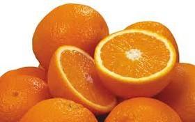دلیل گرانی پرتقال