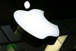 جزئیات پلمپ نمایندگی های «اپل» در تهران/ افزایش قیمت «آیفون»