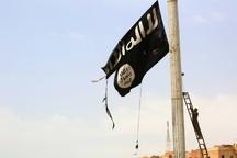 عکس/ داعش به پایین کشیده شد