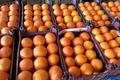 1450 تن میوه شب عید در استان مرکزی ذخیره سازی شد