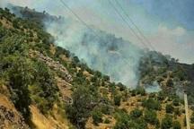 آتش سوزی در منابع طبیعی آذربایجان غربی را به 1504 اطلاع دهید