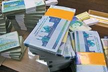 بیش از 4 میلیارد ریال تسهیلات به مددجویان کهگیلویه پرداخت شد