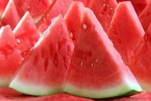 پوست هندوانه، وسواس را از بین می برد
