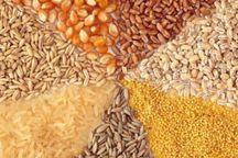 بارانداز و انبار ذخیره نهاده های کشاورزی در طبس ایجاد می شود