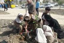 کاشت یکهزار اصله نهال در آبادان همزمان با روز درختکاری