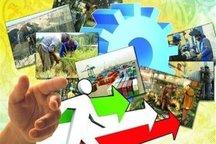 تعاون، الگوی ترمیم کژی و کاستی های پیچیده اقتصاد
