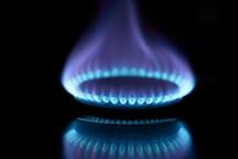 در آئین گل مالی از مشعل های گازی و هیزم های تهیه شده استفاده شود