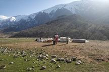 اهالی منطقه عشایری اندیکا با بالگرد امدادرسانی شدند