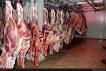 تولید بیش از ۲۸ هزار تن گوشت قرمز در لرستان