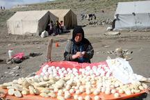 روستاییان و عشایر سرمایه های نظام هستند