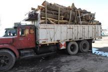 امسال بیش از 18 تن چوب قاچاق در بیجار کشف شد