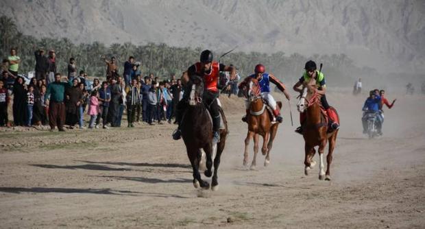 سوارکاران برتر کورس زمستانی استان بوشهر معرفی شدند