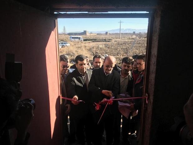 بهره برداری آبیاری نوین در 100هکتار از اراضی تاکستان آغاز شد