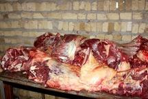 دستگیری عامل توزیع گوشت الاغ در مشهد