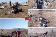 سقوط هواپیما در گرمسار با دو کشته + تصاویر