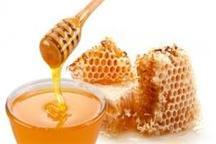 تولید 27 درصد عسل کشور در آذربایجان غربی