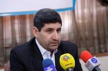 هاشمی: عزم وزارت علوم در مقابله با تقلب علمی جدی است