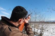 صدور مجوز شکار پرندگان در آذربایجان شرقی آغاز شد