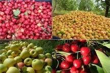 تولید سالانه20 رقم زراعی و باغی جدید در کشور
