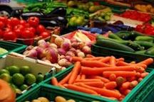 تولید سالانه ۱۲۰ میلیون تُن محصولات کشاورزی در کشور
