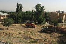شورا به تنهایی قادر به توقف پروژه محدوده «نورمهال» نیست